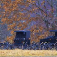 Amish Buggies In the Rain Art Prints & Posters by Glenda Borchelt