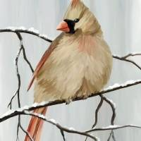 Female Cardinal Art Prints & Posters by Pixel Paint Studio