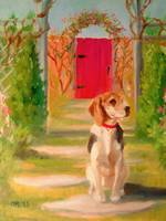 A Beagle in the Garden