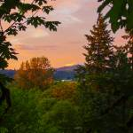 """""""Mt St Helens at Sunset and Maples"""" by dgolden"""