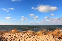 Lake Michigan Dunes 8