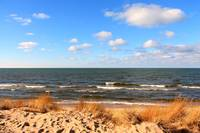 Lake Michigan Dunes 6