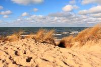 Lake Michigan Dunes 5