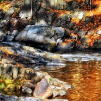 Autumn Pool Art Prints & Posters by Lisa Rich