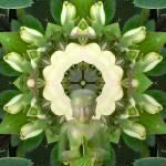 """Zen Garden Mandala"" by SeaAngel12"