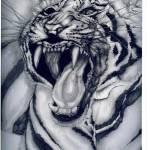 """""""siberian tiger/dusk"""" by Sosij"""