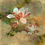 """""""""""Golden Mist"""" from the series """"In the Lotus Land"""""""" by Hannahart"""