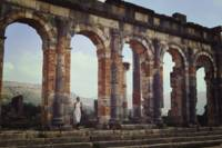 Discovery in Volubilis