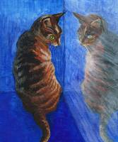 crated mirror cat painting