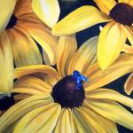 """Brown Eyed susan"" by Cas"
