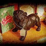 """Bulldog For Sale"" by JamesHanlon"