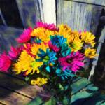 """Spring Daisies on The Porch"" by bloomingvinedesign"