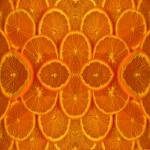 """Sliced Oranges"" by bloomingvinedesign"