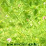 """Spring Meadow - Your mind is a garden."" by SandraGouldFord"