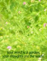 Spring Meadow - Your mind is a garden.