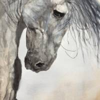 Heavy Horse Art Prints & Posters by Lyn Banks