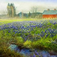 red barn blue bonnets Art Prints & Posters by r christopher vest