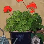 """""""GERANIUM WITH BIRDHOUSE AND WATERING CAN"""" by norska43"""