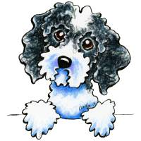 Black Parti Cockapoo Lined Up Art Prints & Posters by Off-Leash Art™