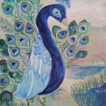 """Peacock at Wildlife Refuge"" by nemo1"