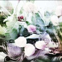 Water, Flowers, Motion Art Prints & Posters by Through The Split Window