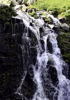 Waterfall Mount Ranier National Forrest 2