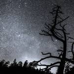 """Celestial Stellar Dark Universe"" by lightningman"