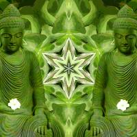 Double Green Buddhas Art Prints & Posters by Diane Lynn Hix