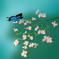 Blue Mountain Butterfly and Pink Dogwood Art Prints & Posters by Neal  and Judy Stratton