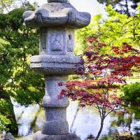 Japanese Lantern In the Garden Art Prints & Posters by George Oze