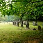 """John Barlow Cemetery"" by Zki"