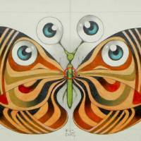 four eyes butterfly Art Prints & Posters by federico cortese