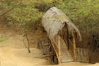 Thatched Bamboo Bridge