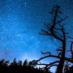 """Celestial Stellar Universe"" by lightningman"