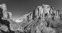 Zion Panorama in Black and White