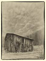 Textured Barnside-B&W-Antique