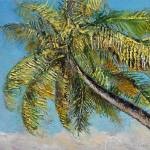 """Windy Palm"" by creese"