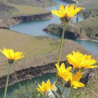 Days Of Sunshine On The Edge Of A Canyon Art Prints & Posters by Photography Moments