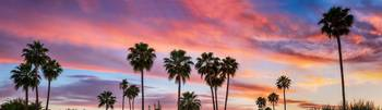 Romantic Hot Tropical Night Panorama View