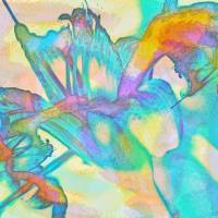 Tiger Lily Abstract by Lisa Rich