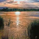 """""""Walden Pond Sunset II"""" by BrianKerls"""
