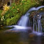 """Alpine Waterfall"" by BrianKerls"