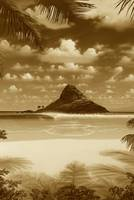 CHINAMAN'S HAT 20X30