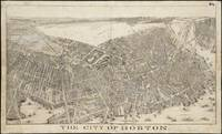 Vintage Map of Boston Massachusetts (1879)