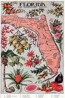 Vintage Map of Florida (1917)