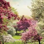 """Cherry Tree Grove"" by JessicaJenney"