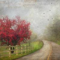 Valley of Hymns Art Prints & Posters by Cheryl
