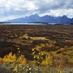 """Teton View Vertical Jack Lk Lodge6351"" by KerstPhoto"