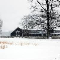 Barn In Winter Art Prints & Posters by Dawn Eves