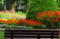 Park Bench and Flower Garden
